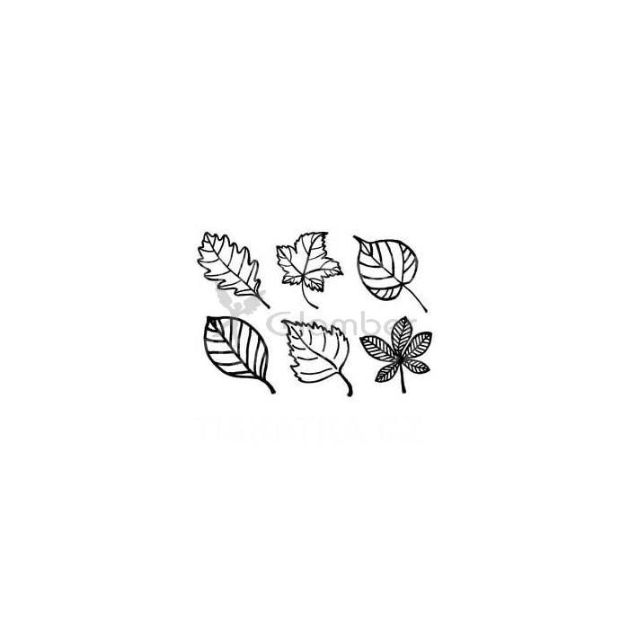 Listy stromů - tiskátka