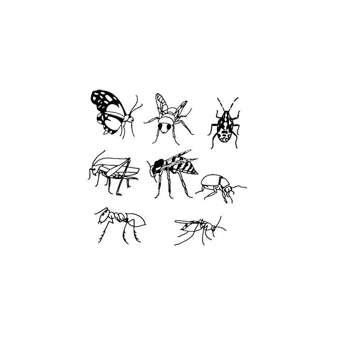 Sada razítek Hmyz 35 x 35 mm  8ks